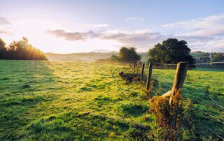 Land ownership in Ireland - what are registered